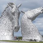 The Kelpies gifts , Helix Park, Scotland by David Rankin
