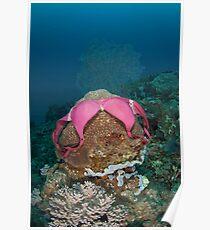 Underwater underwear Poster