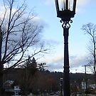 Lamp post by Penny Fawver