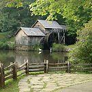 Mills by Penny Rinker