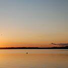 Sinking Sun by Deborah Singer