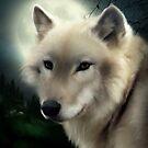 Wolf by Karri Klawiter