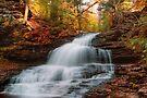 October At Onondaga Falls by Gene Walls