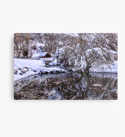 Glimpse Of Winter Metal Print