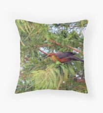 Lady Grackle Throw Pillow