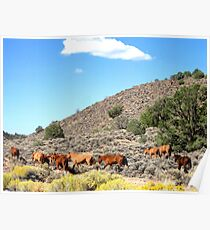 Friend Of The Mustang Arla M. Ruggles Poster