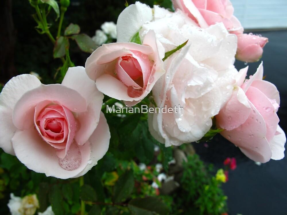 Offerings of beauty by MarianBendeth