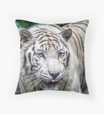 Anticipation HD Throw Pillow