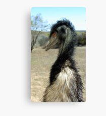 fuzzy wildlife Canvas Print