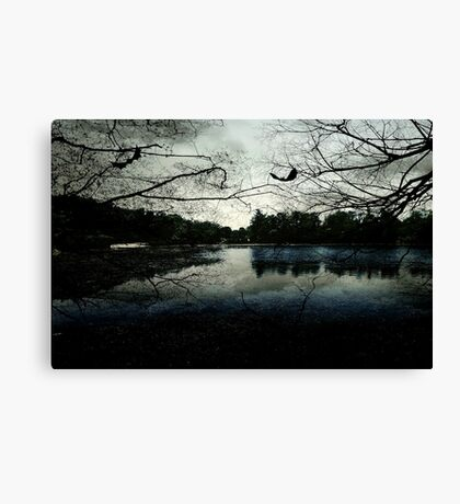 As evening falls © Canvas Print