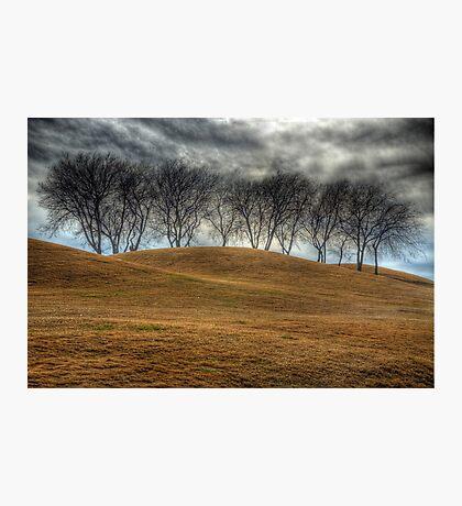 Parched Landscape Photographic Print