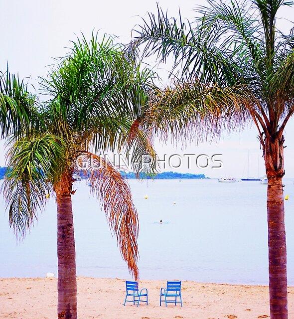 palmiers de la rivière by GUNN-PHOTOS