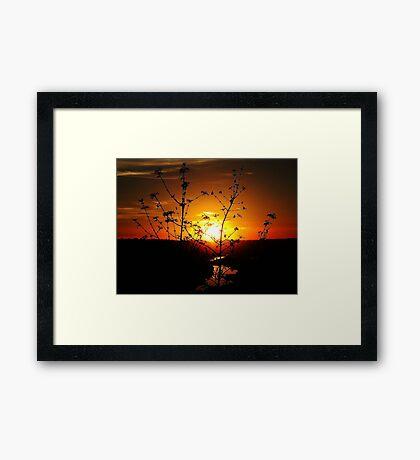 Sensational Sunset Framed Print