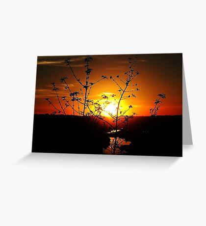 Sensational Sunset Greeting Card