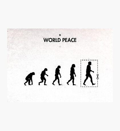 99 Steps of Progress - World peace Photographic Print