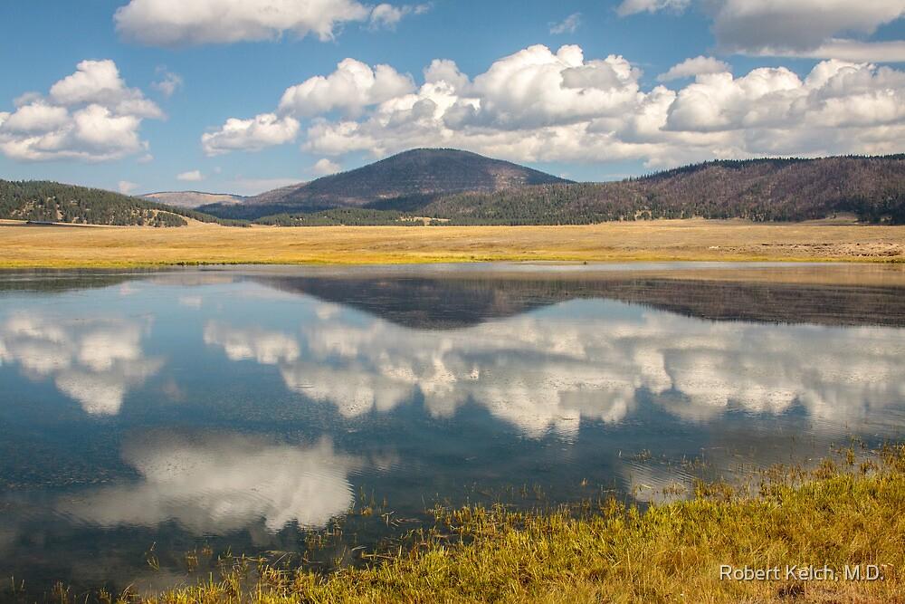 Jemez Lake in the Valles Grande by Robert Kelch, M.D.
