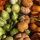 Autumn Harvest by Shiva77