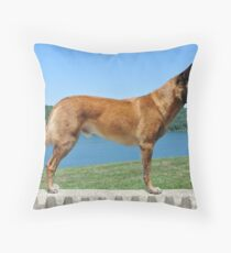 4 years old Throw Pillow