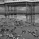 Cromer pier aspect by StephenRB
