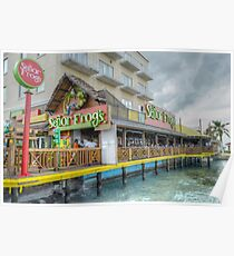 """""""Senor Frog"""" on Woodes Rodgers Walk in Nassau, The Bahamas Poster"""