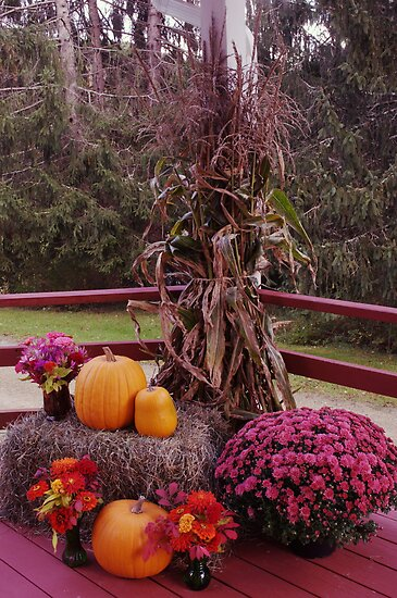 beautiful fall colors by Penny Fawver