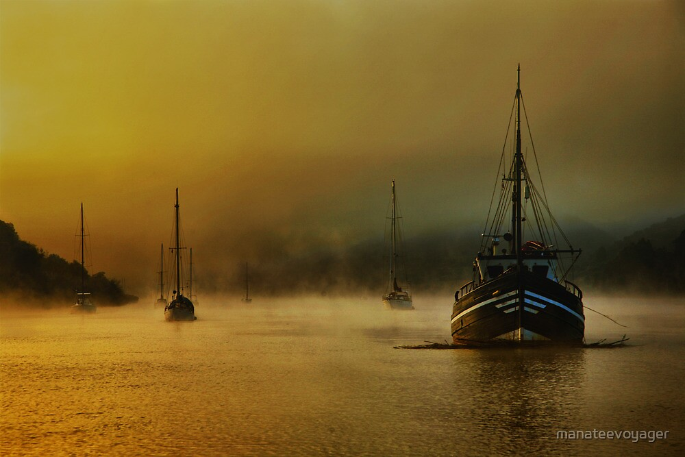 Carina In The Mist by manateevoyager