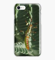 Unknown Insect iPhone Case/Skin