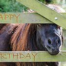 Birthday Pony by JEZ22