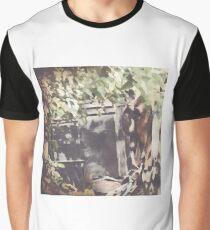 Amish Horse Graphic T-Shirt
