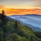 Great Smoky Mountains National Park - Morning Haze at Oconaluftee by Dave Allen