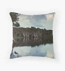 Lake Ainsworth, early morning No. 2 Throw Pillow