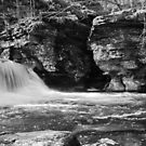 Rickets Glen Waterfalls by Penny Fawver