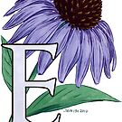 E is for Echinacea - full image by Stephanie Smith