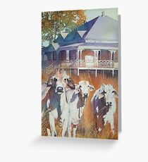 Brahmans of the valley Greeting Card