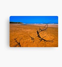 Sandy Red Beach with Branch (HDR) Canvas Print