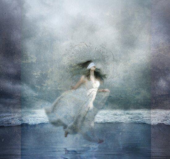 Zephyr by Aimee Stewart