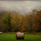 Round Bales in the Fog by Debra Fedchin