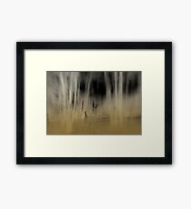 Stranger in the Forest Framed Print