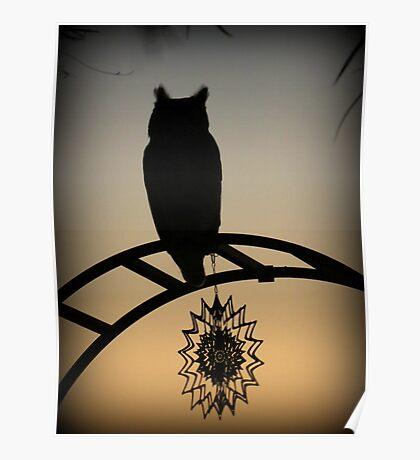 Great Horned Owl ~ Sunset Silhouette  Poster