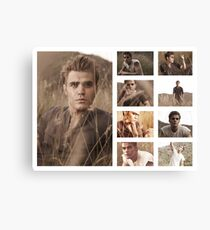 Paul Wesley grass photoshoot Canvas Print