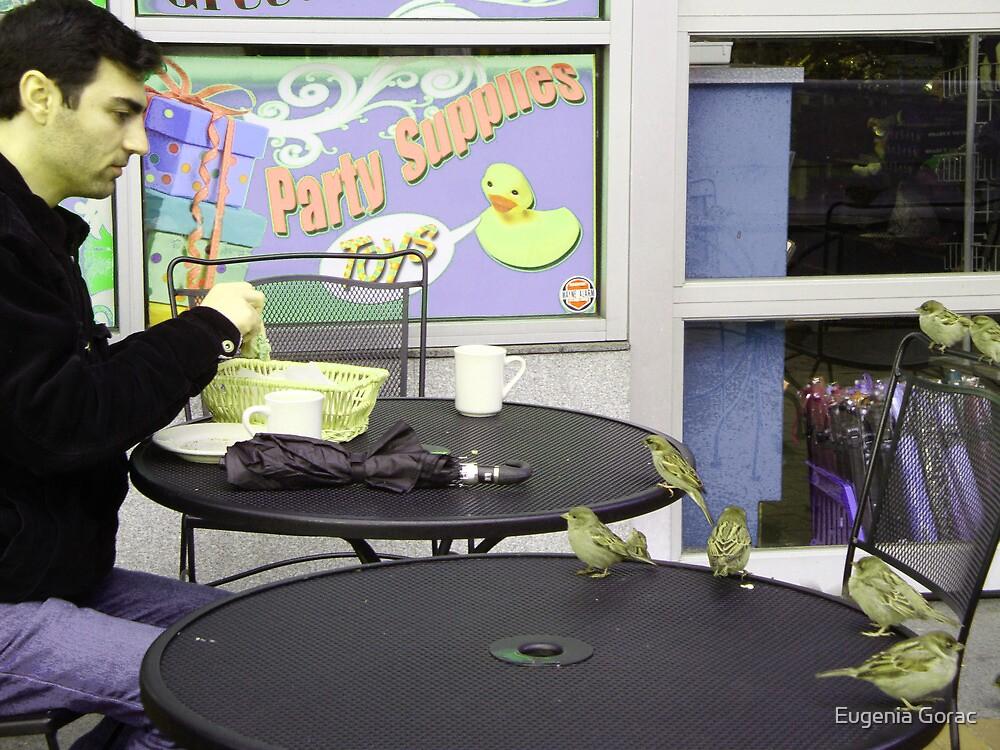 Robins party by Eugenia Gorac