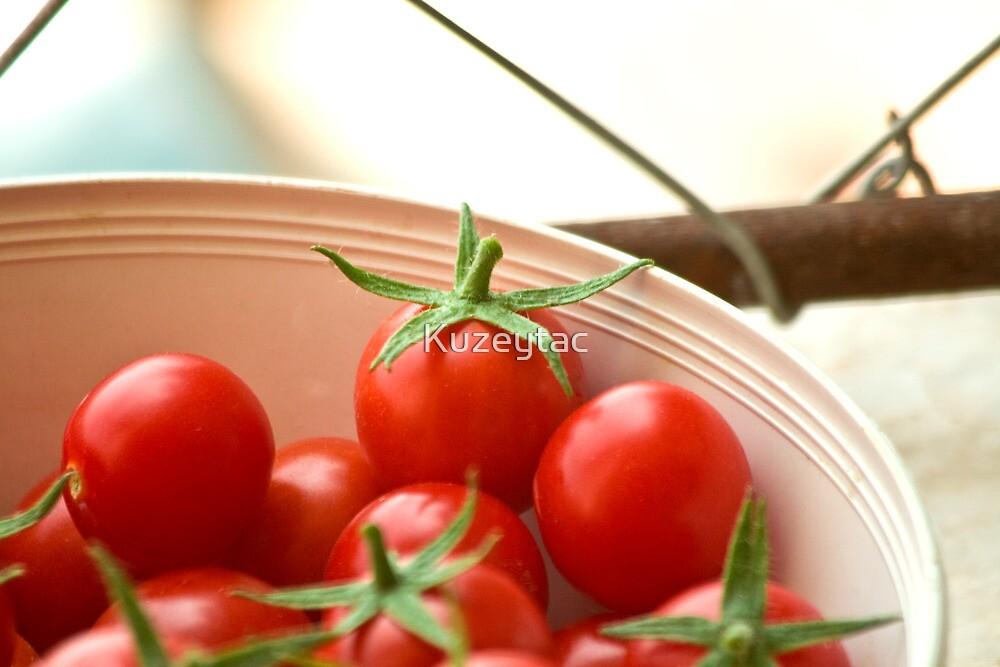 Freshly Picked Cherry Tomatoes  by Kuzeytac