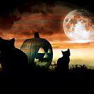 Black Magic Moon by Angela Harburn