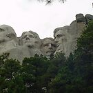Presidents of the USA by Penny Rinker