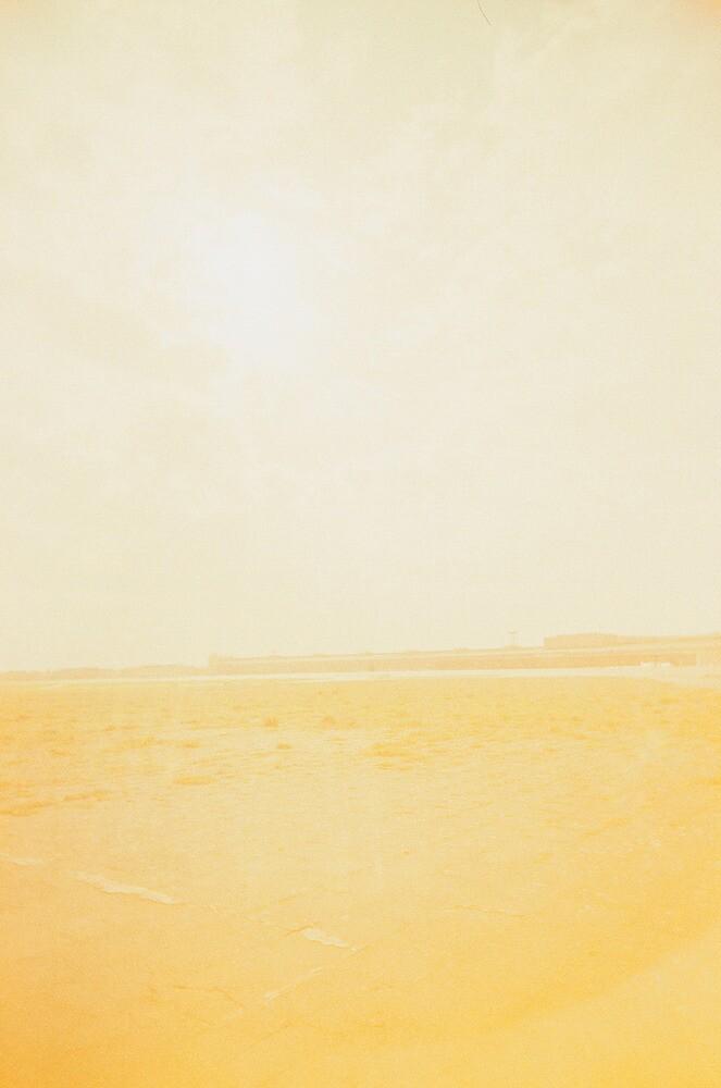 Sunny by Tara Holland