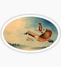 Canada Geese Sticker