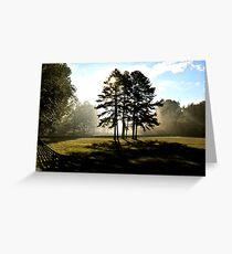 Sunbeams & 2 strong trees Greeting Card