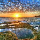 Thursday Sunset by Danielle  Miner