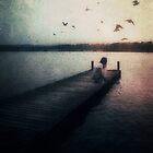 Birds by Nikki Smith (Brown)