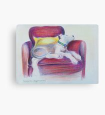 The Comfy Chair Canvas Print